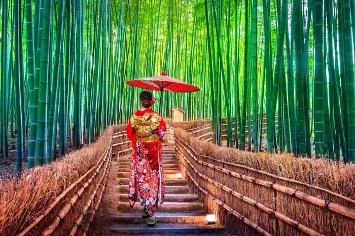 Nằm mộng thấy đi du lịch Nhật Bản một mình đặt cược con số 37 - 89